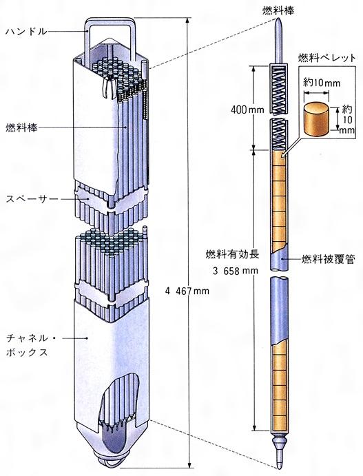 図 図に示すように、沸騰水型原子炉(BWR)の場合は、この燃料棒を7×7本あ...  コトバンク