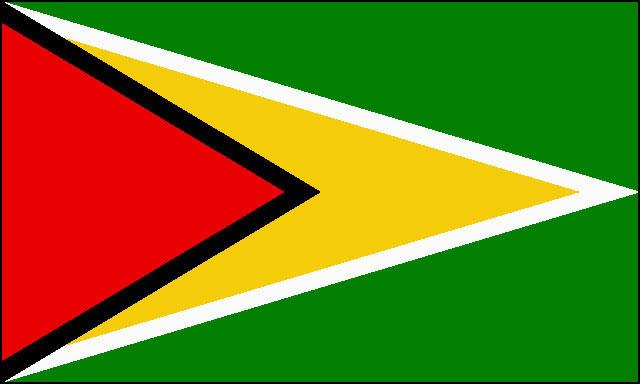 ガイアナ共和国 国旗