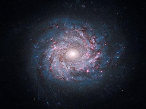 渦巻銀河(うずまきぎんが)とは -...