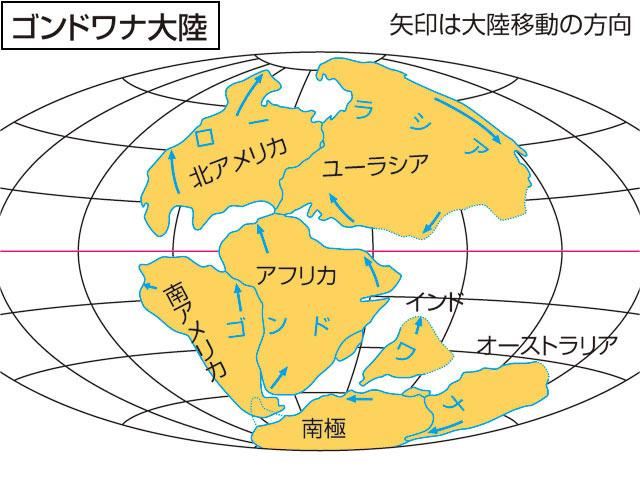 「ゴンドワナ大陸」の画像検索結果