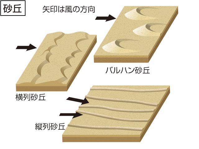 砂丘(さきゅう)とは - コトバンク