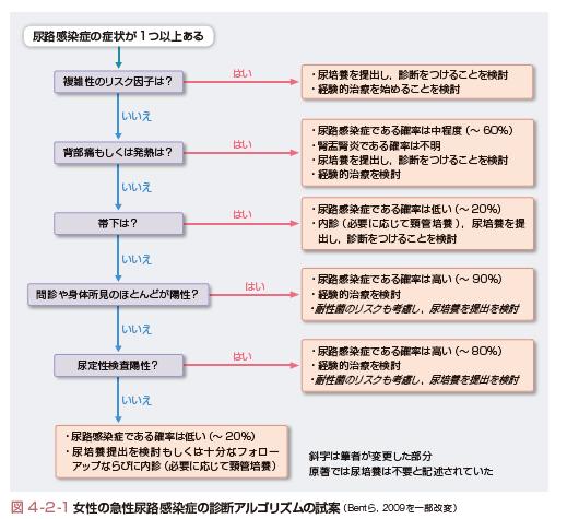 性 路 症 尿 複雑 感染 尿路感染症(おしっこの感染症・発熱)