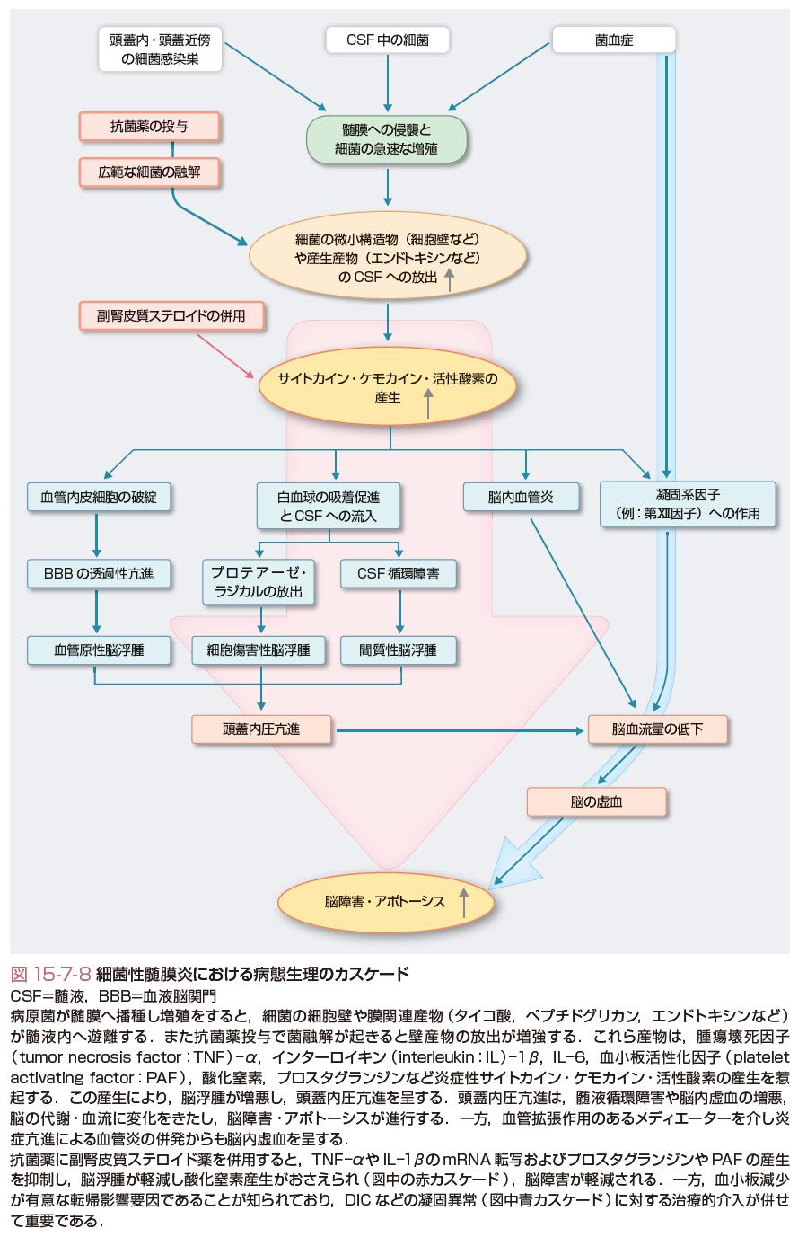 刺激 髄 症状 膜