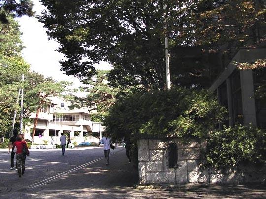 成城大学(読み)せいじょうだいがく