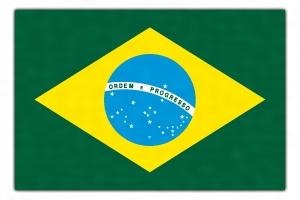 ブラジル(ブラジル)とは - コト...