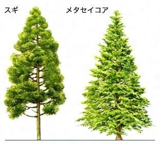 https://kotobank.jp/image/dictionary/nipponica/media/81306024003073.jpg