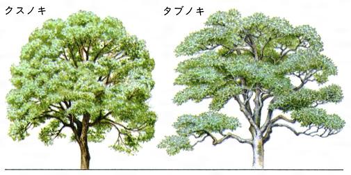 https://kotobank.jp/image/dictionary/nipponica/media/81306024003187.jpg