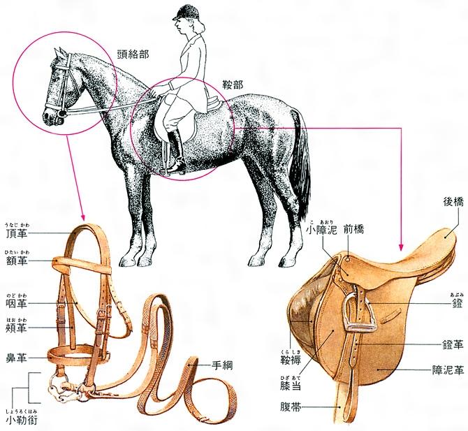 馬具(ばぐ)とは - コトバンク