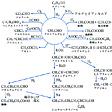 アセトアルデヒド(英語表記)acetaldehyde