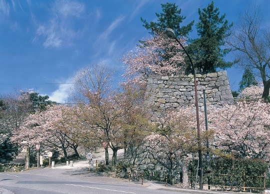 松阪(市)(まつさか)とは - コトバンク