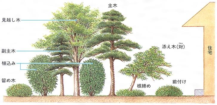 庭木 - Niwaki