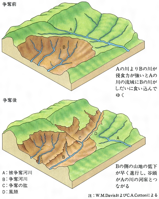 https://kotobank.jp/image/dictionary/nipponica/media/81306024015556.jpg