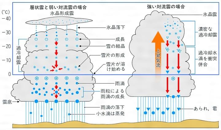 は 大き 雲 半径 粒 ミリ 何 さ の の